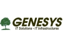 consulting days. GENESYS Days 2004