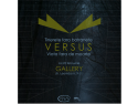 iffest document art . versus, expozitie, fotografie, pictura, grafica, animatie, anav, gallery