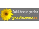 NOU!!! ZODIACUL ARBORICOL!!! Oare ce spune despre viitorul tau? Afla pe www.gradinamea.ro