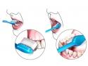 boli parodontale. Greselile zilnice de igiena orala ne pot afecta sanatatea dintilor!