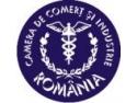 Topul National al Firmelor. Camera de Comert si Industrie a Romaniei organizeaza Topul National al Firmelor 2009