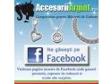 Facebook. Primul magazin virtual de componente pentru bijuterii pe Facebook
