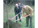 garaj stejar auriu. Primarul Daniel Thellmann a plantat un stejar în amintirea scriitorului Friedrich Schiller