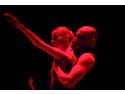 Spectacol de DANS-Tango si Dans contemporan