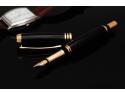 cel mai bun plan de afacere. Stiloul Poenari Baron Business