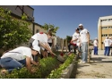 voluntari. Peste 350 de voluntari TELUS International Europe au renovat  Scoala nr. 136 din Bucuresti