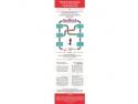 colegii. Infografic