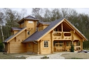 vital protect home. Case de lemn Wood Home