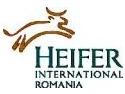 "vesta de ceremonie. Ceremonie Heifer ""Dar din dar – Passing on the gift"""