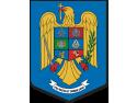 Viceprim-ministrul pentru securitate națională, ministrul afacerilor interne, Gabriel Oprea, a condus videoconferința cu prefecții