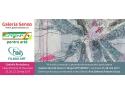 galeria. Galeria SENSO, la Târgul ART SAFARI 2017, ediţia a IV-a  Galeria SENSO participă şi promovează artistul plastic  Ana Ştefania Andronic  BUZU, 25 – 28 mai 2017