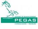 haccp. PEGAS Sisteme de Management oferă soluţia pentru alinierea firmelor din industria alimentară  la normele HACCP