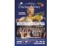 seara muzicala. Gala Muzicala Johann Strauss aduce pe scena Salii Palatului  60 de muzicieni profesionisti