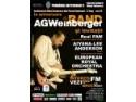 rochita aniversare. Concert AGWeinberger la aniversare