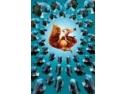 Epoca de gheata 2:Dezghetul  IN PREMIERA SI IN EXCLUSIVITATE LA HBO ROMANIA