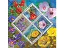 filatelic. Florile deşertului ilustrate pe mărcile poştale româneşti