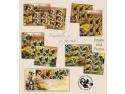 mocanița pe timbre. Fructele şi Fauna pe timbrele poştale româneşti