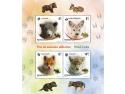 Pui de animale sălbatice - blocul de patru timbre al emisiunii