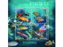 mister z. Peștii – o aură de mister și îndemn spre aventură