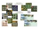mocanița pe timbre. Rarităţi ale naturii, pe timbrele româneşti
