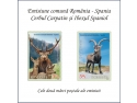 cerbul carpatin. România și Spania - Cooperare în domeniul filatelic