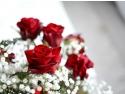 rochii de culoare rosie . Florandes.ro