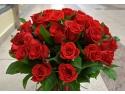Trandafiri Pomisori si Plangatori. Florandes.ro