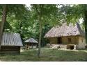 dimitrie gusti. Magia satului tradiţional la Muzeul Naţional al Satului'