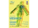 magic mesh. Alex Meshkov / Ali Nasser / Oliviu @ Kristal Glam Club! Vineri 18 Decembrie!