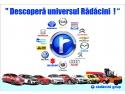 moto. Universul Radacini Grup