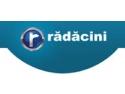 Rădăcini Motors felicită campioana CSM București
