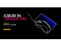 Angajatori de TOP Timisoara ONLINE