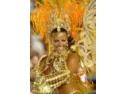 costumle de carnaval. CARNAVAL DE RIO