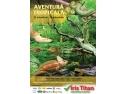 Aventură tropicală în mijlocul Bucureştiului