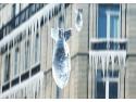 Turturi, pericole de iarnă