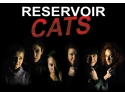 laura asafte. Comedia neagra Reservoir Cats