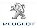Iriflaps RC. Peugeot RCZ in reteaua EURIAL