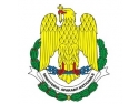 miropa arm. Armata României la AeroNautic Show 2014