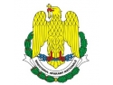 ziua Irlandei. Ceremonii organizate de M.Ap.N. pe 9 mai, de Ziua Independenţei de Stat a României şi Ziua Europei