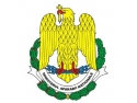 intel platinum.  Ministrul Duşa va participa la exerciţiile Platinum Eagle - 15 şi SARMIS - 15