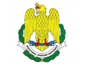 ajutor umanitar. Misiune umanitară a Forţelor Aeriene Române
