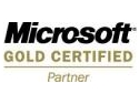 SOFTEXPERT devine Microsoft Gold Certified Partner