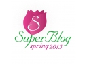 materiale hobby si creativitate. logo Spring SuperBlog 2015