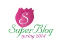 blogging. logo Spring SuperBlog 2014
