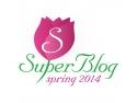 logo Spring SuperBlog 2014