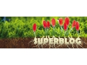 gala superblog. Spring SuperBlog 2016