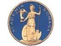 """st  patrick. Academia Română lansează """"Dicţionarul General al Literaturii Române (S/T)"""" – volumul VI"""