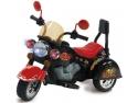oferta vila eco. Masinute electrice copii.Modele si preturi:http://www.masinute-copii.ro/