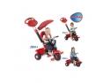 imporator triciclete copii. Compara acum modele de Triciclete Smart Trike, din oferta magazinului www.lumeacopiilor.com.ro si alege tricicleta potrivita.