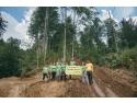 Leonardo DiCaprio susține salvarea pădurilor virgine din România